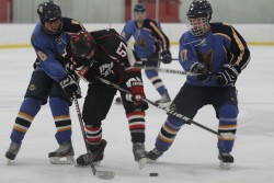 Club hockey looks to right ship against Northern Illinois