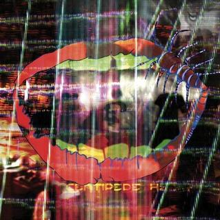Experimental band Animal Collective released their latest album,