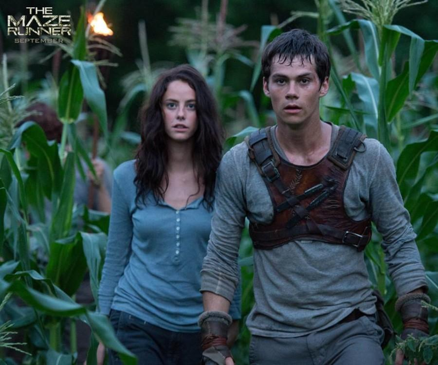 The Maze Runner, another dystopian film adapted from a novel, hits theaters Sept. 19. Photo via Facebook.