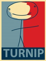 Turnip endorses Pete Green, write-in candidate for MUSG president