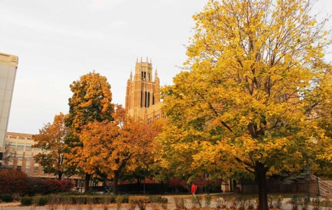 Marquette recognized for its fall colors