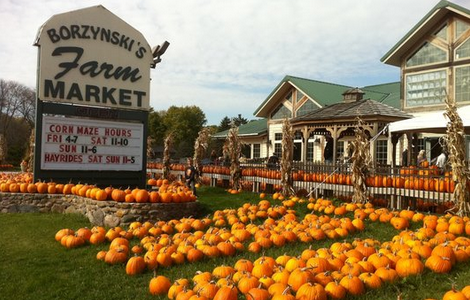 Top 6 places to visit in MKE this fall