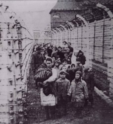 Eva and Miriam Kor, center and right in the striped jackets, after being liberated from Auschwitz. Photo via NOLA.com.