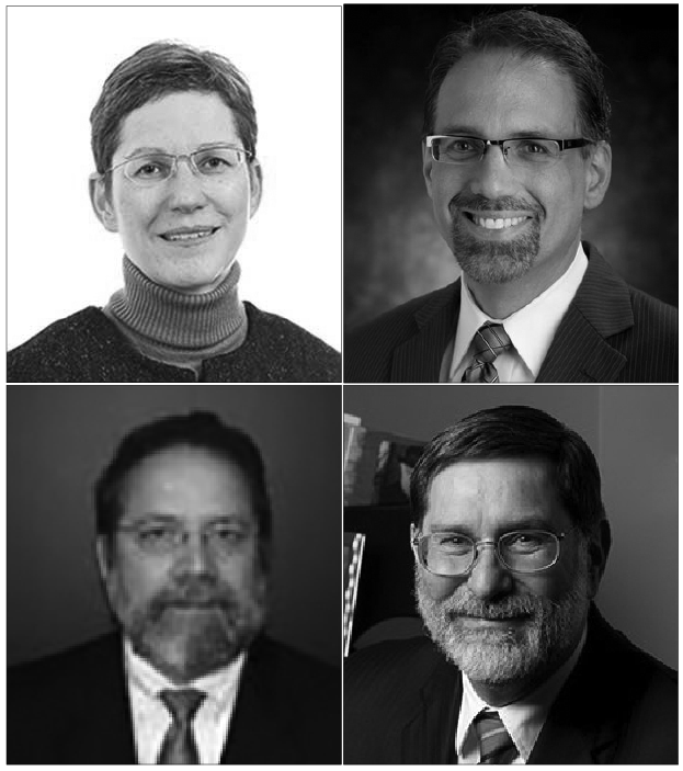 From top left: Dr. Rowena Pecchenino, Dr. Daniel Myers, Dr. John Frendreis and Dr. Paul Ludden.
