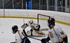 Hockey sweeps opening weekend against Madison
