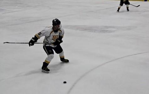 Hockey splits weekend against Illinois