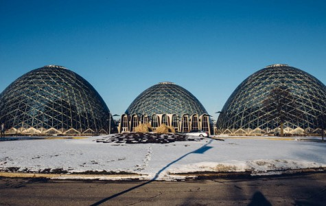 COMSTOCK: The demise of the domes