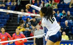 Volleyball eliminated from NCAA Tournament