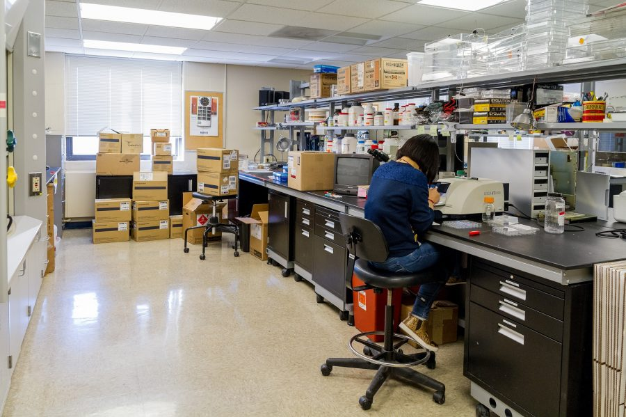 David Bakers lab is one of several in the College of Health Sciences Kubly Center to determine the biological causes of certain mental illnesses.