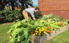 Student-run gardens populate campus greenspaces
