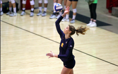 Volleyball gives Wisconsin a challenge, loses in four sets