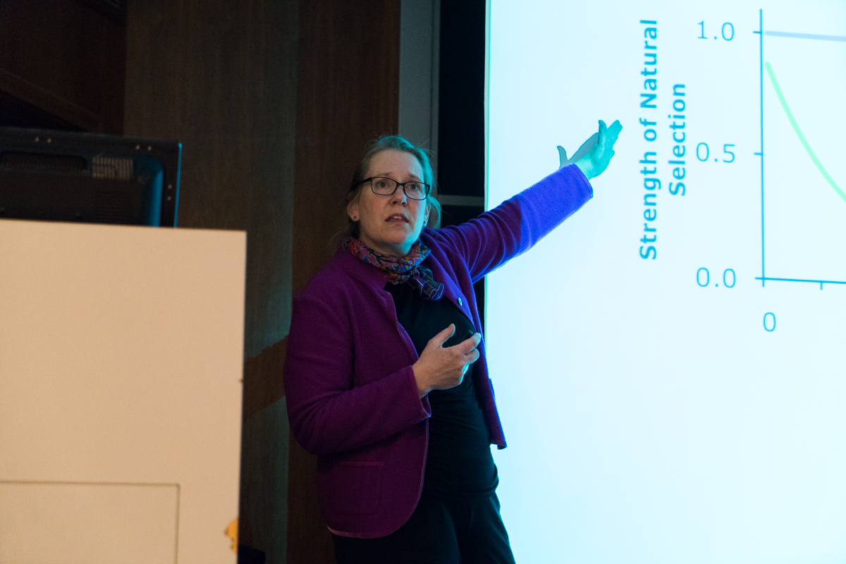 """Anne Bronikowski, an alumna of Marquette's College of Arts and Sciences, gave the final talk of the semester in the Scholl Seminar Series on Nov. 17.Her talk, titled """"Evolution and Comparative biology of Aging,"""" discussed the rate at which different organisms age."""