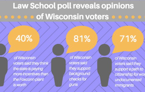 The Law School's recent poll includes Wisconsinites' views on topics ranging from Foxconn to gun control. Graphic by Sydney Czyzon.