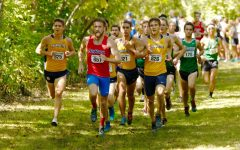 SEASON PREVIEW: Cross country teams look toward stronger performances in postseason