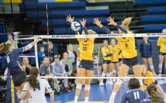 Volleyball routs Butler in straight sets