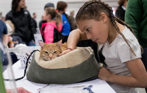 Great Lakes Pet Expo celebrates 15th year