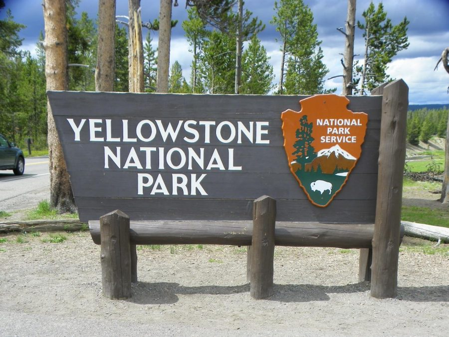 Yellowstone National Park leads the way in conservation practices. Photo via flickr