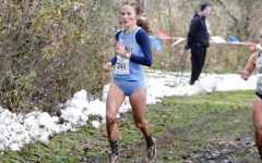 Cross country season ends with many personal records at NCAA Regionals
