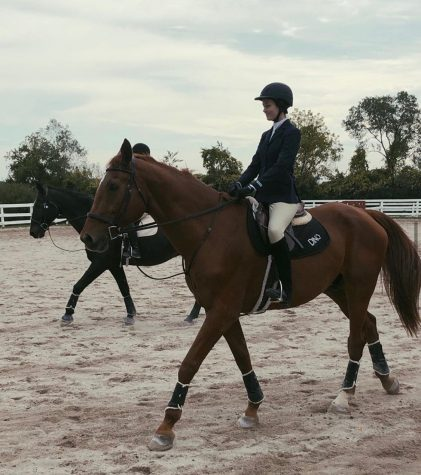 Senior Kaitlin Whalen rides her IHSA draw, Dino, in a show. (Photo courtesy of Marquette Equestrian.)