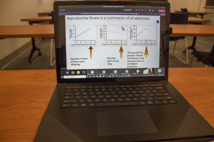 Classrooms switching to virtual/staying in person