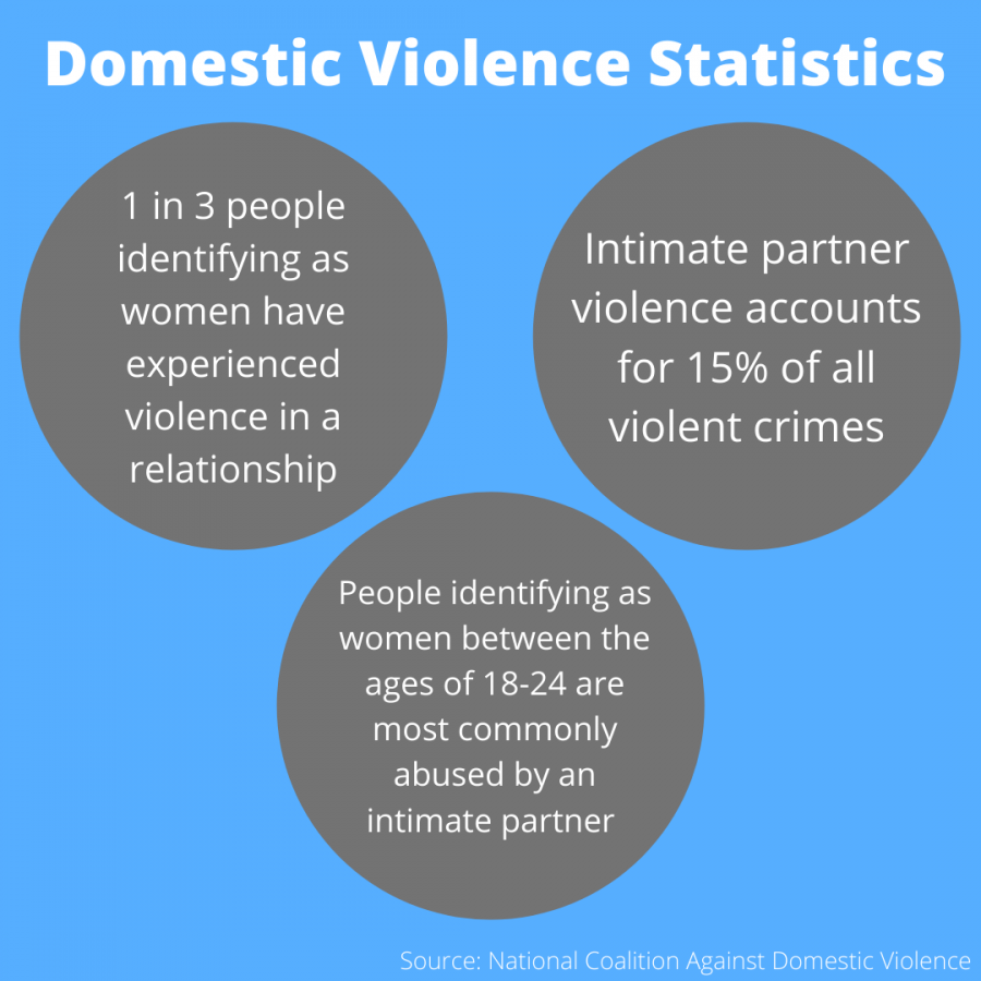 CADY: Police need more domestic violence situation training